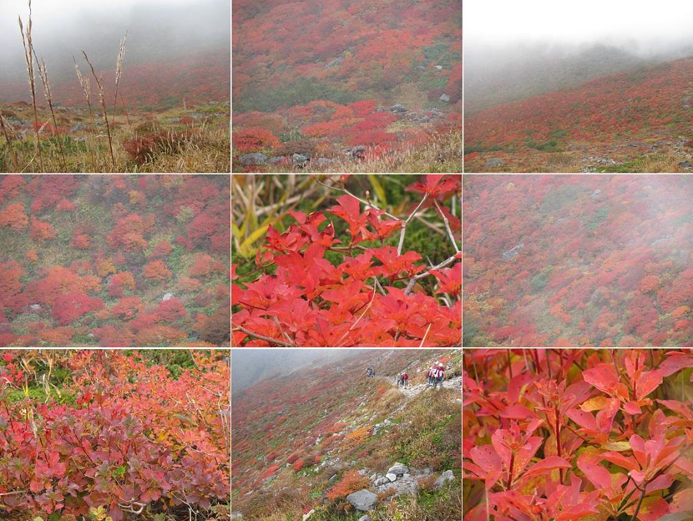 20111009那須岳トレッキング (2)