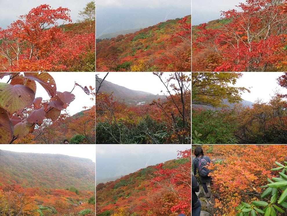 20111009那須岳トレッキング (8)