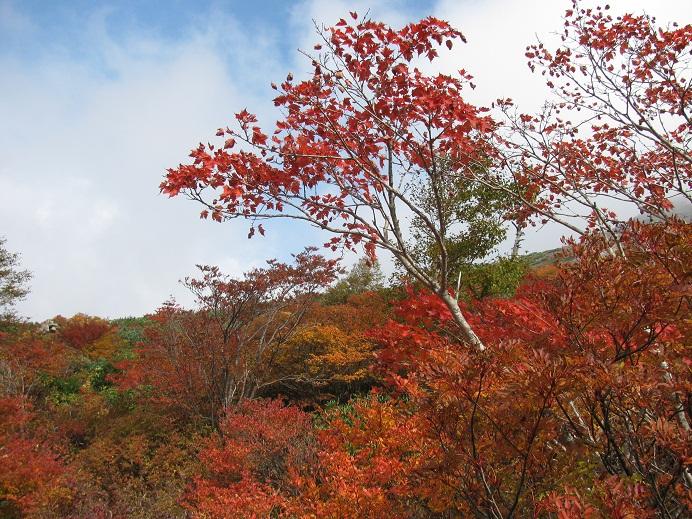 20111009那須岳トレッキング (9)