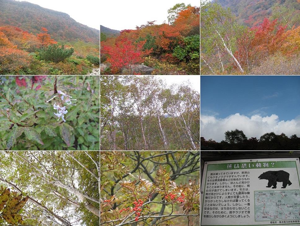 20111009那須岳トレッキング (10)