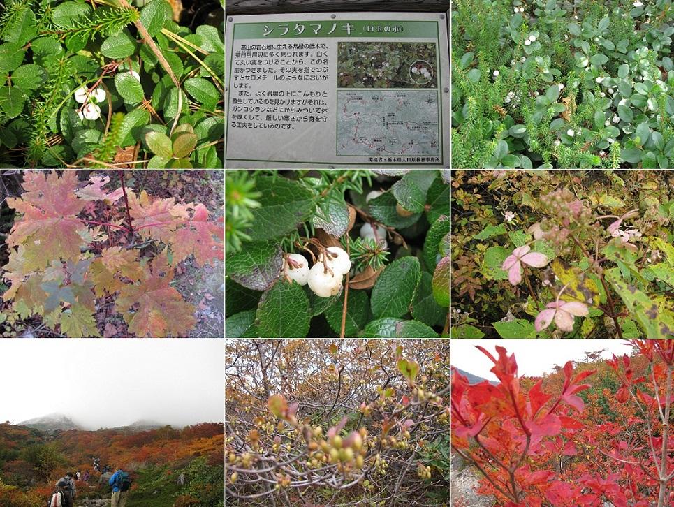 20111009那須岳トレッキング (13)