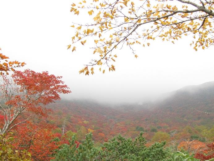 20111009那須岳トレッキング (20)