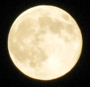 2011年最遠の満月1012 (3)