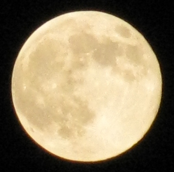 2011年最遠の満月1012 (4)