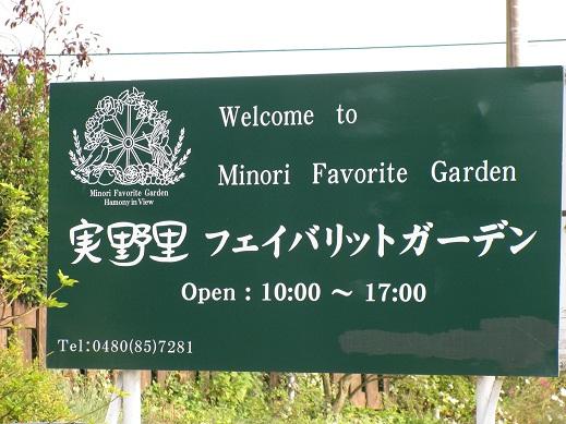 20111108実野里フェイバリットガーデン (1)