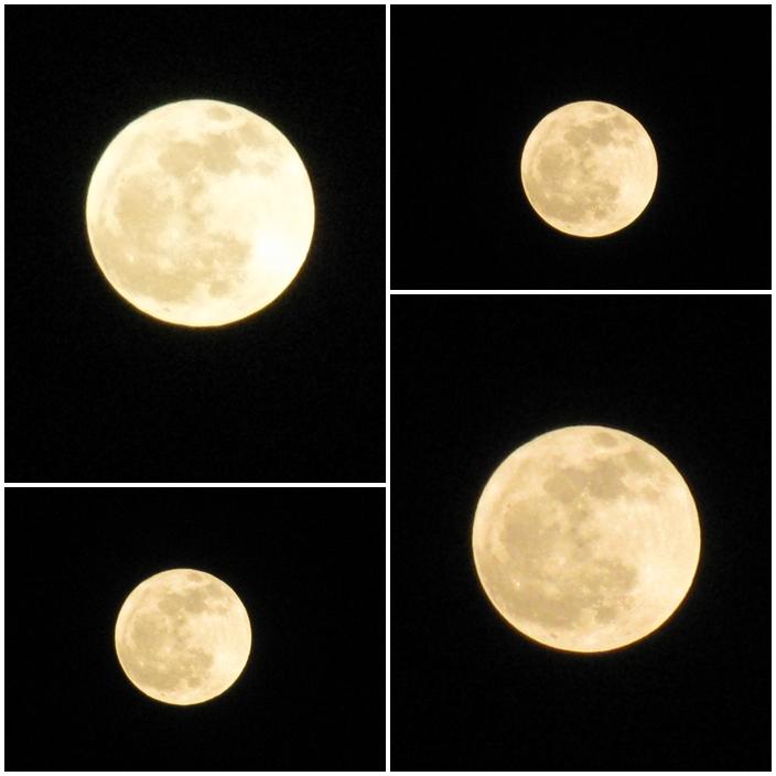 20120109満月