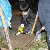 2012-11-24-0017.jpg