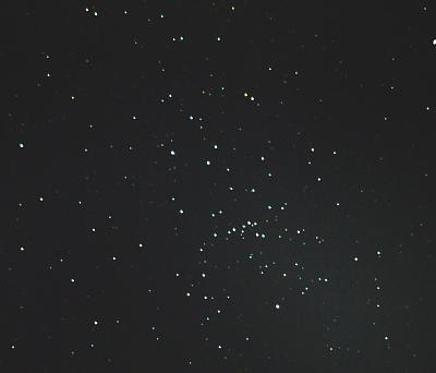 M48s.jpg