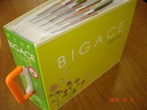 シンコール 壁紙コーディネート集「BIGACE1000 2010-2012」