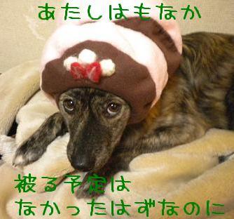 monaka4.jpg