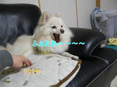 DSCF0962_convert_20100206035315.jpg