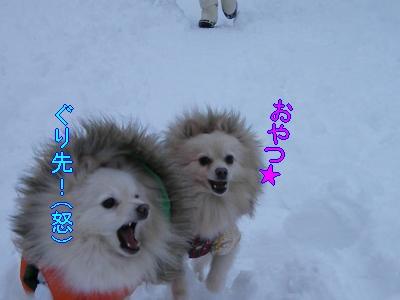 DSCF1134_convert_20100210032656.jpg