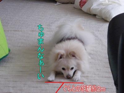 DSCF1619_convert_20100219034243.jpg