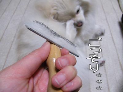 DSCF2084_convert_20100307051319.jpg