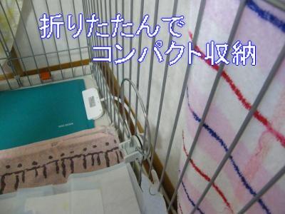 DSCF2127_convert_20100312060107.jpg