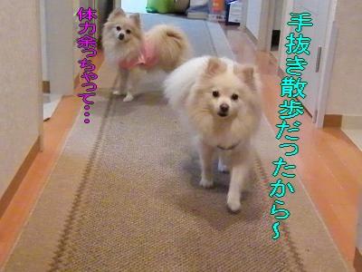 DSCF2191_convert_20100313043753.jpg