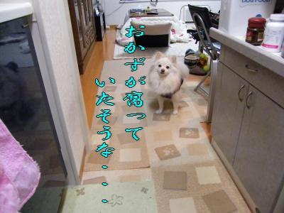 DSCF2471_convert_20100326005613.jpg