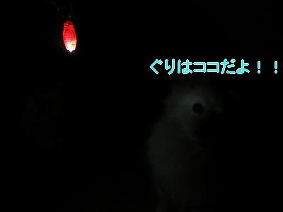 DSCF2719_convert_20100409012402.jpg