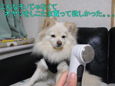 DSCF2745_convert_20100411025911.jpg