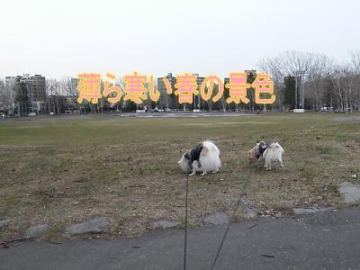 DSCF2766_convert_20100413024500.jpg