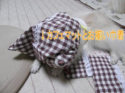 DSCF3003_convert_20100423024627.jpg
