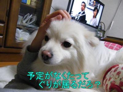 DSCF3105_convert_20100503031547.jpg