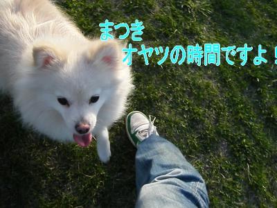 DSCF3172_convert_20100505013712.jpg