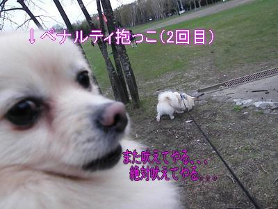 DSCF3268_convert_20100510021658.jpg