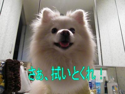DSCF3364_convert_20100518024750.jpg