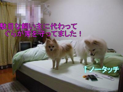 DSCF3428_convert_20100524010051.jpg