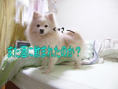 DSCF3430_convert_20100524010132.jpg