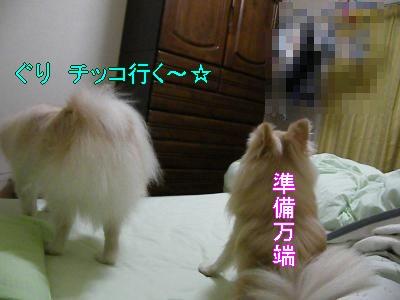 DSCF3436_convert_20100524010321.jpg
