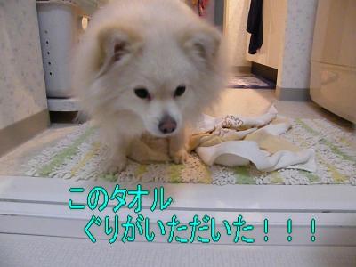 DSCF3440_convert_20100528025304.jpg