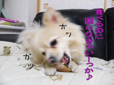 DSCF3443_convert_20100530045440.jpg