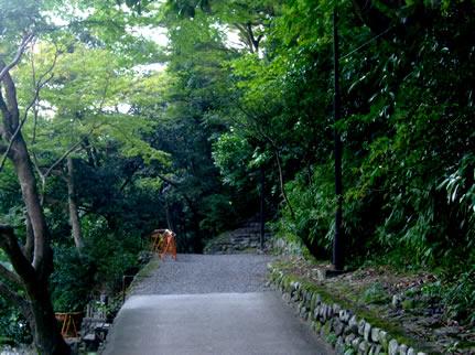 blog20111021cu.jpg