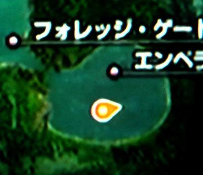 blog20111111k.jpg