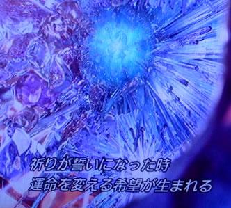 blog20120516e.jpg