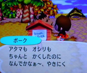 blog20120925s.jpg