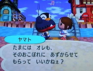 blog20120925y.jpg