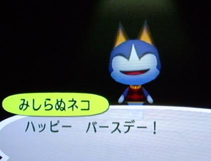 blog20120926h.jpg