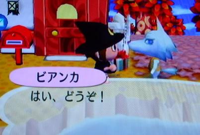 blog20120926j.jpg