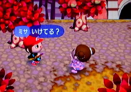 blog20120926s.jpg