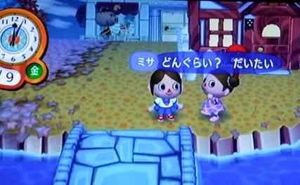 blog20120926y.jpg