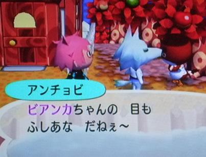 blog20120929i.jpg