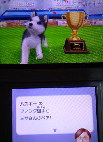 blog20121002y.jpg