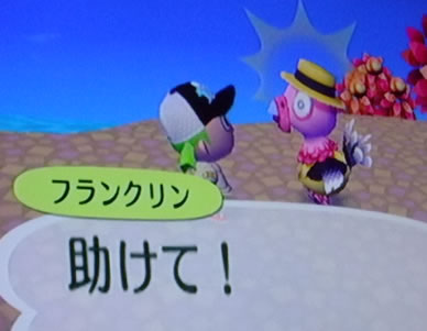 blog20121009i.jpg