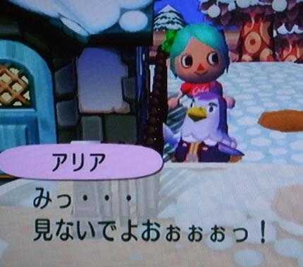 blog20121010v.jpg