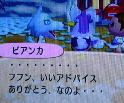 blog20121010z.jpg