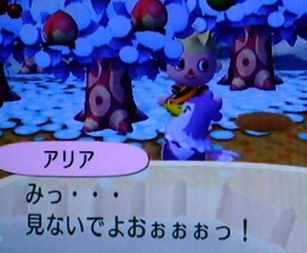 blog20121014h.jpg