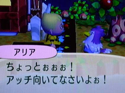 blog20121020k.jpg